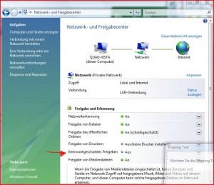 Vista Freigabe für XP