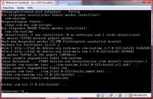 VIM OK Linux Editor