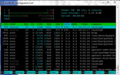 HTOP 100% CPU Last