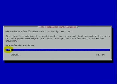 Debian-Raid SWAP