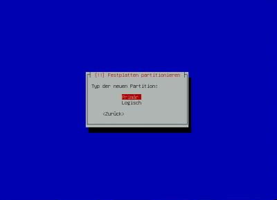 Debian-Raid - Typ der neuen Partition