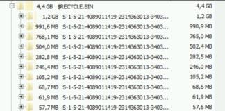 Papierkorb Terminalserver leeren